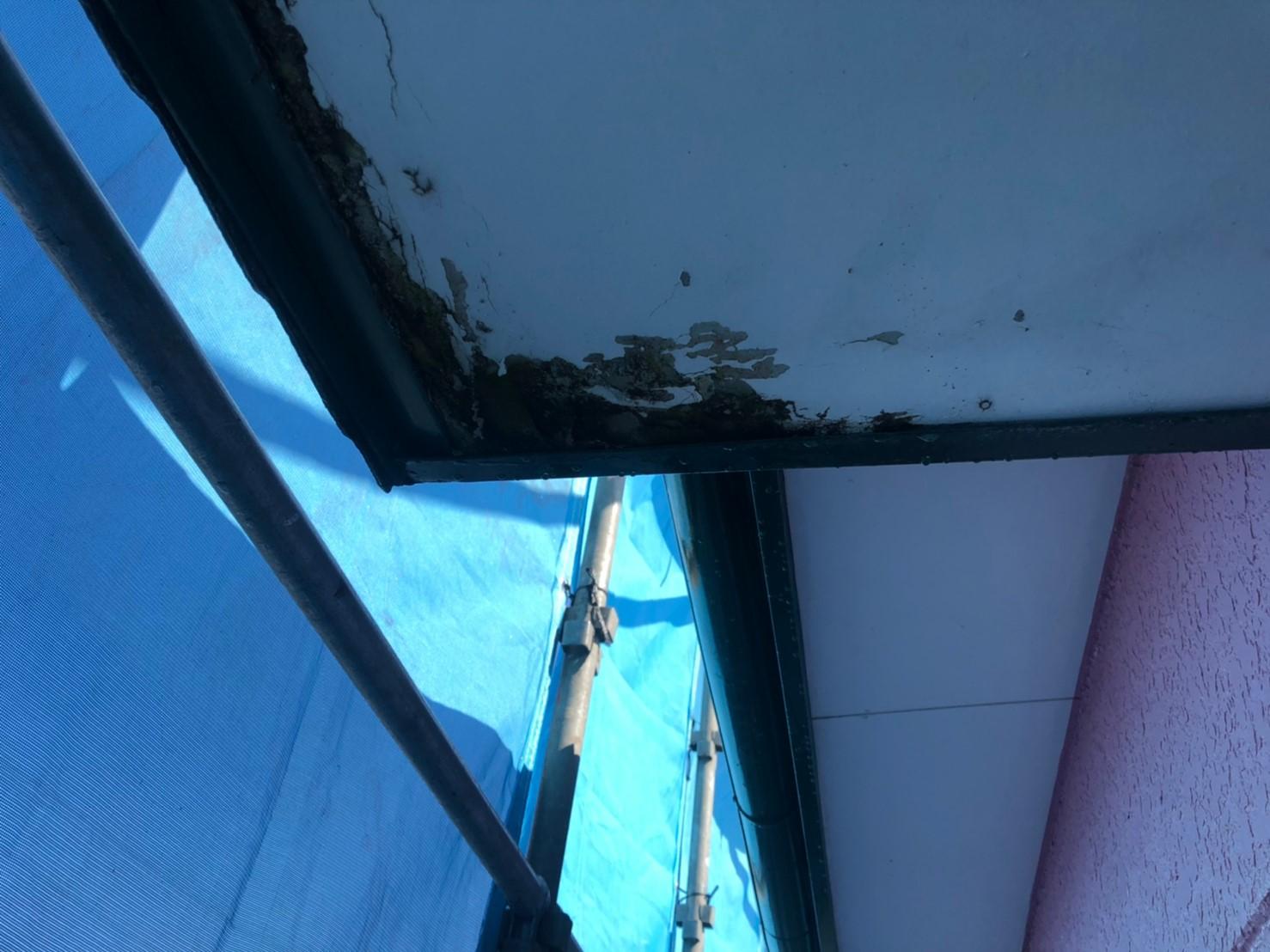 腐食した軒天井の画像